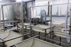 fpc-processing